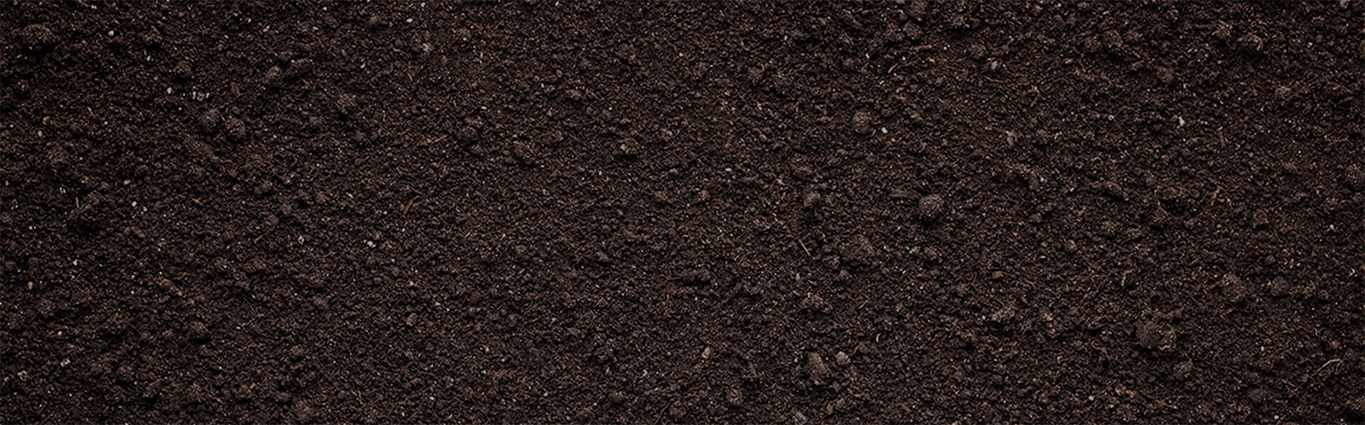Top Soil Suppliers